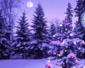 Le culle della Triennale del Legno ai mercatini di Natale di Rango e ai Presepi nelle contrade di Nomi